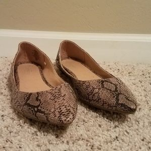 Snake skin pointed toe flats